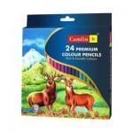 Premium Colour Pencils - 24 Shades