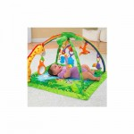 3 In 1 Musical Play Gym - Rain Forest Theme