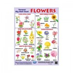 Wall Chart Flowers