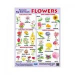 Wall Chart Flowers